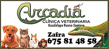 CV-ARCADIA-WEB